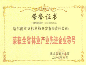 Advanced Enterprise Award